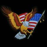 ワッペン ラージサイズ アメリカンイーグル&星条旗 (29cm×34cm)/Patch