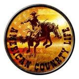アメリカン カントリーライフ メタルサイン/Metal Sign American Country Life