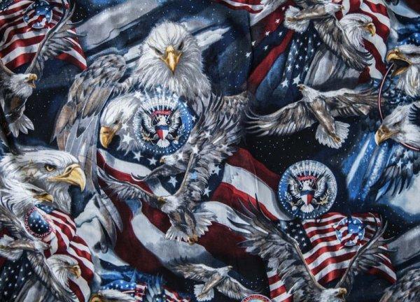画像2: アメリカンイーグル&アメリカンフラッグ 半袖シャツ/Short Sleeve Shirt