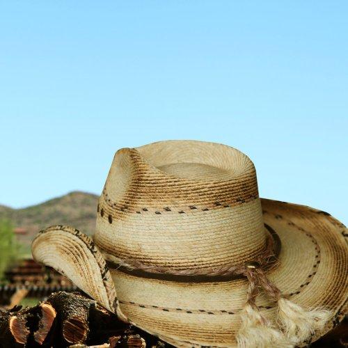 画像クリックで大きく確認できます Click↓3: スター&パーム ウエスタン ストローハット(ナチュラル)/Western Straw Hat(Natural)