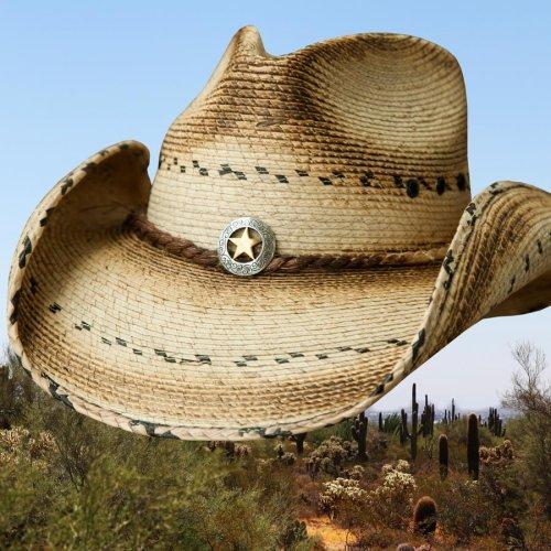 画像クリックで大きく確認できます Click↓2: スター&パーム ウエスタン ストローハット(ナチュラル)/Western Straw Hat(Natural)