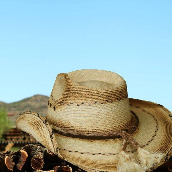 画像2: スター&パーム ウエスタン ストローハット(ナチュラル)/Western Straw Hat(Natural)