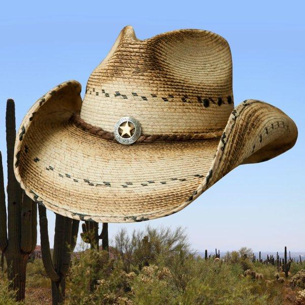 画像1: スター&パーム ウエスタン ストローハット(ナチュラル)/Western Straw Hat(Natural)