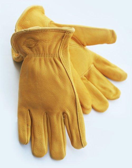 画像クリックで大きく確認できます Click↓1: ディッキーズ ディアスキン グローブ(鹿皮手袋・裏地なし)M/Dickies Genuine Deerskin Leather Gloves(Pine Yellow)
